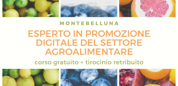 Esperto in promozione digitale del settore agroalimentare